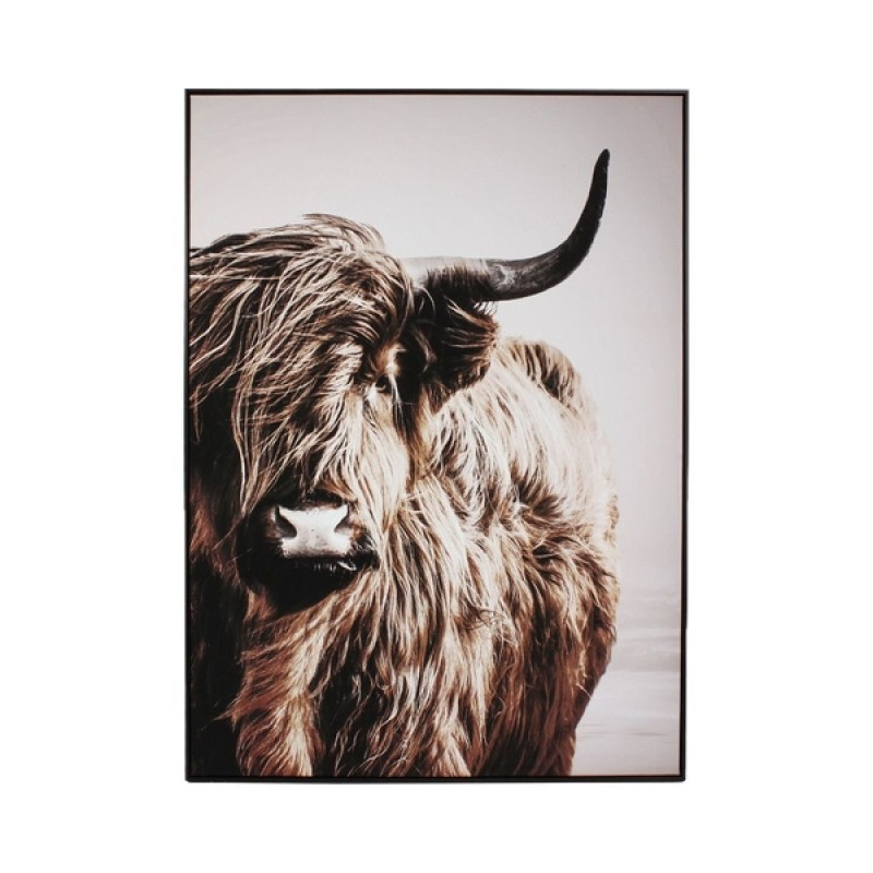 CANVAS PHOTO PICTURE HIGHLAND COW