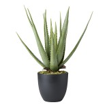 ARTIFICIAL PLANT ALOHE 60