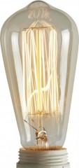 Decorative Bulb       - BULBS